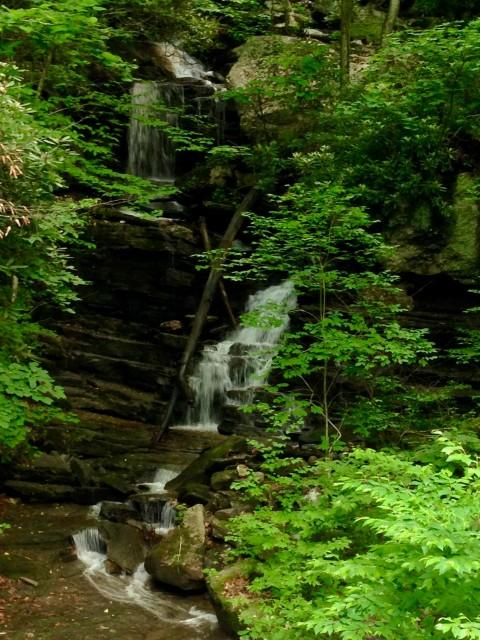 Big Plumtree Creek